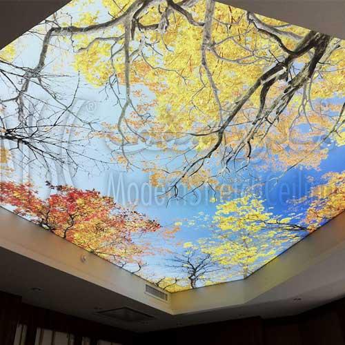 سقف-کشسان پرینتی